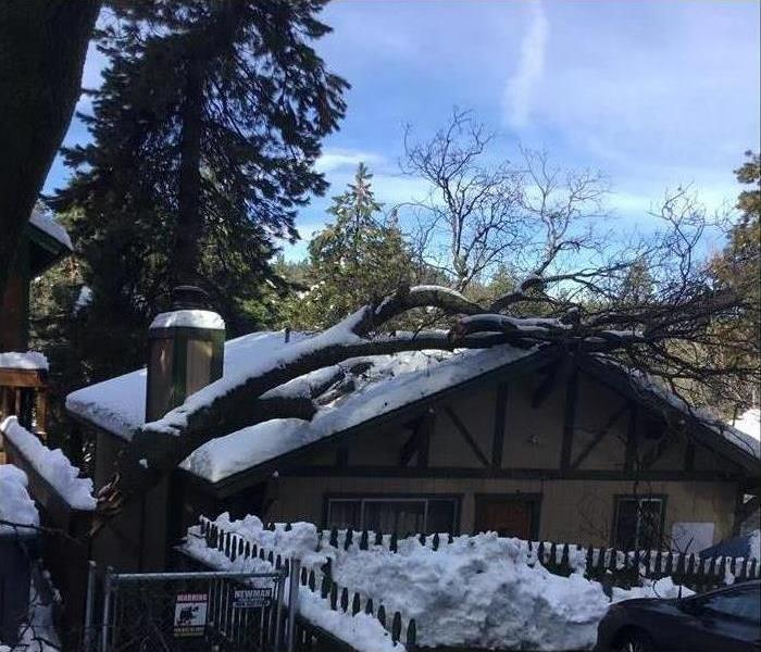 Neighbors tree fell over on a homeowner's roof