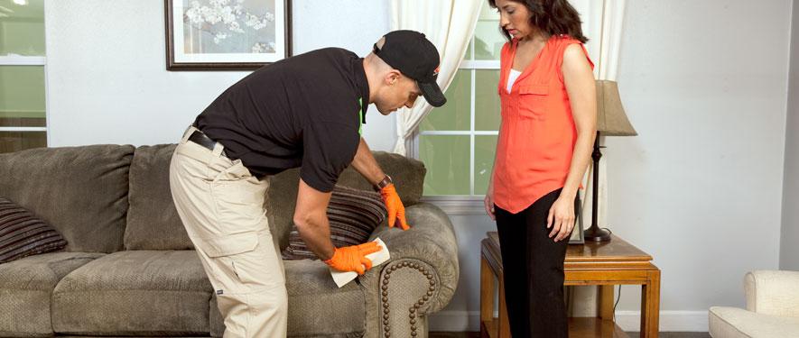 Coeur D'alene, ID carpet upholstery cleaning